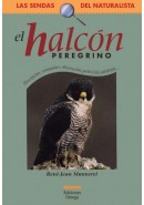 EL HALCN PEREGRINO