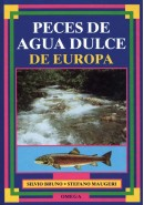 PECES DE AGUA DULCE DE EUROPA, Bruno