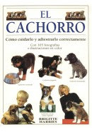EL CACHORRO