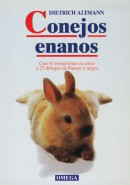 CONEJOS ENANOS